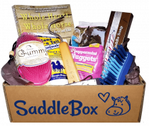 saddlebox3