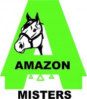 Amazon misters