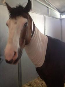 Presley surgery2