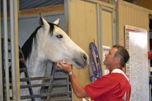 Red Bucket Horse Rescue Gala20151024DSC_3134.JPG0023_edited-1
