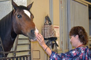 Red Bucket Horse Rescue Gala20151024DSC_3137.JPG0026_edited-1