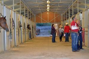 Red Bucket Horse Rescue Gala20151024DSC_3145.JPG0034_edited-1