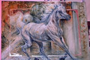 Red Bucket Horse Rescue Gala20151024DSC_3173.JPG0062_edited-1