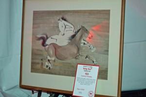 Red Bucket Horse Rescue Gala20151024DSC_3206.JPG0095_edited-1