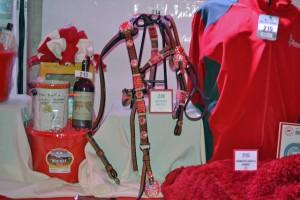 Red Bucket Horse Rescue Gala20151024DSC_3233.JPG0122_edited-1