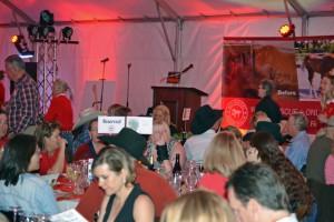 Red Bucket Horse Rescue Gala20151024DSC_3236.JPG0125_edited-1