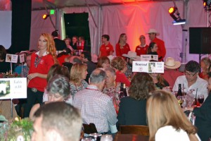 Red Bucket Horse Rescue Gala20151024DSC_3238.JPG0127_edited-1