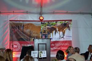Red Bucket Horse Rescue Gala20151024DSC_3239.JPG0128_edited-1