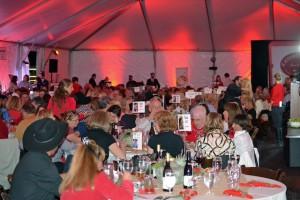 Red Bucket Horse Rescue Gala20151024DSC_3355.JPG0244_edited-1