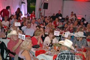 Red Bucket Horse Rescue Gala20151024DSC_3493.JPG0382_edited-1