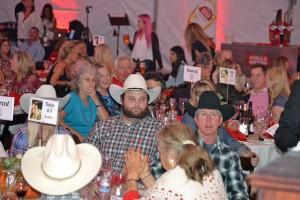 Red Bucket Horse Rescue Gala20151024DSC_3521.JPG0410_edited-1