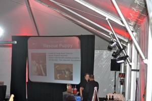 Red Bucket Horse Rescue Gala20151024DSC_3542.JPG0431_edited-1